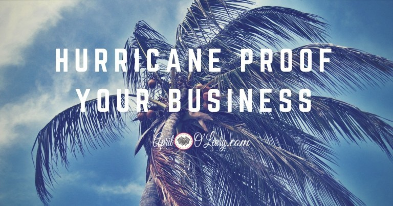 Hurricane Proof Your Business