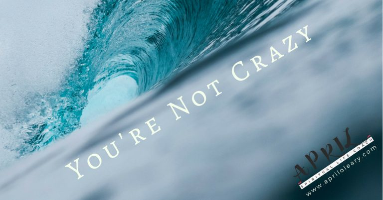 You're Not Crazy